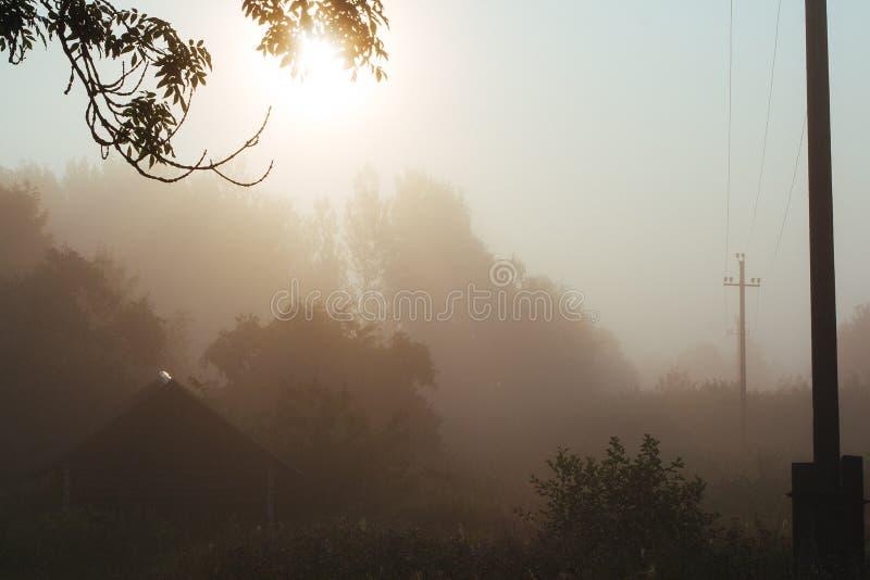有雾的早晨在村庄 免版税库存图片