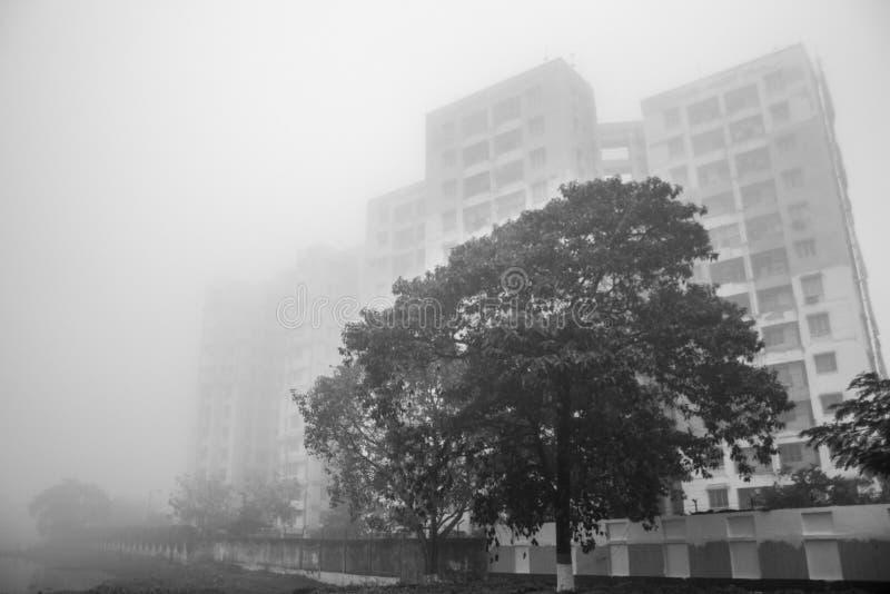 有雾的早晨好 免版税库存图片