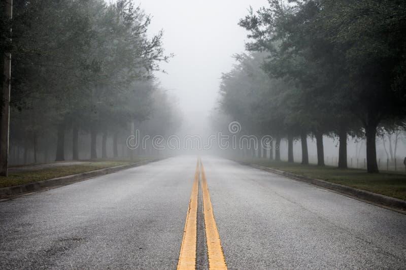 有雾的早晨路 免版税库存图片