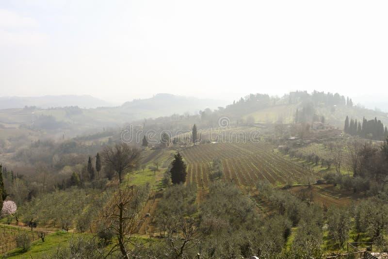 有雾的春天美好的风景在托斯卡纳,清早,意大利,欧洲 免版税库存照片
