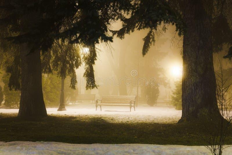 有雾的晚上公园 免版税库存图片