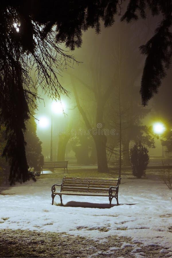 有雾的晚上公园 免版税库存照片