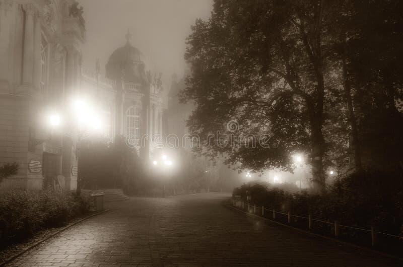 有雾的晚上在公园 库存图片