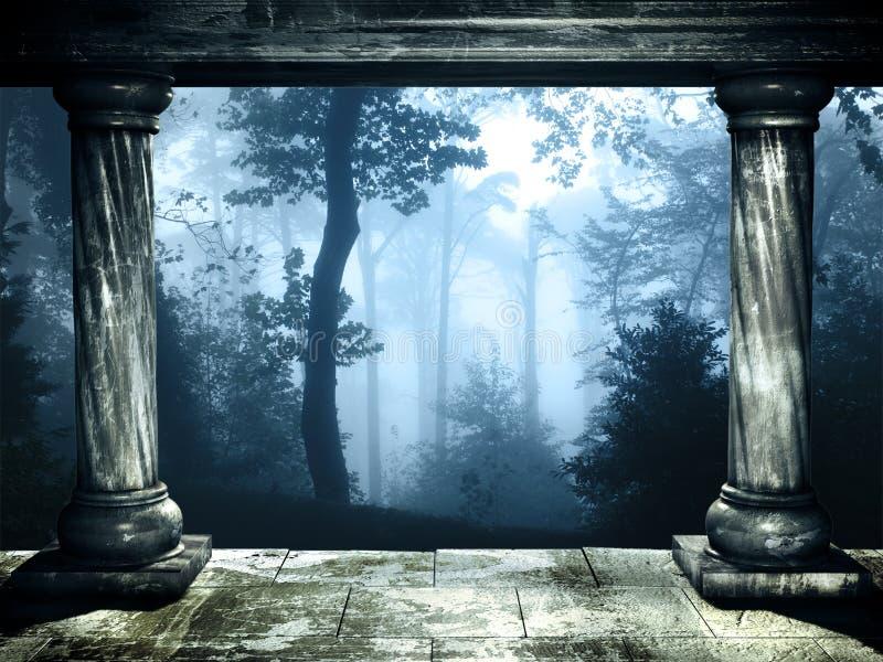 有雾的森林神奇风景  免版税库存图片