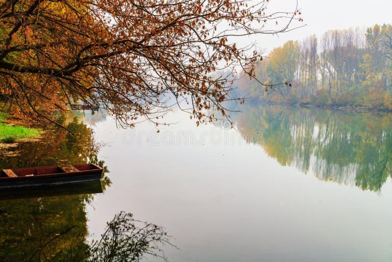 有雾的河和秋天树反射,多瑙河,斯洛伐克 免版税库存照片