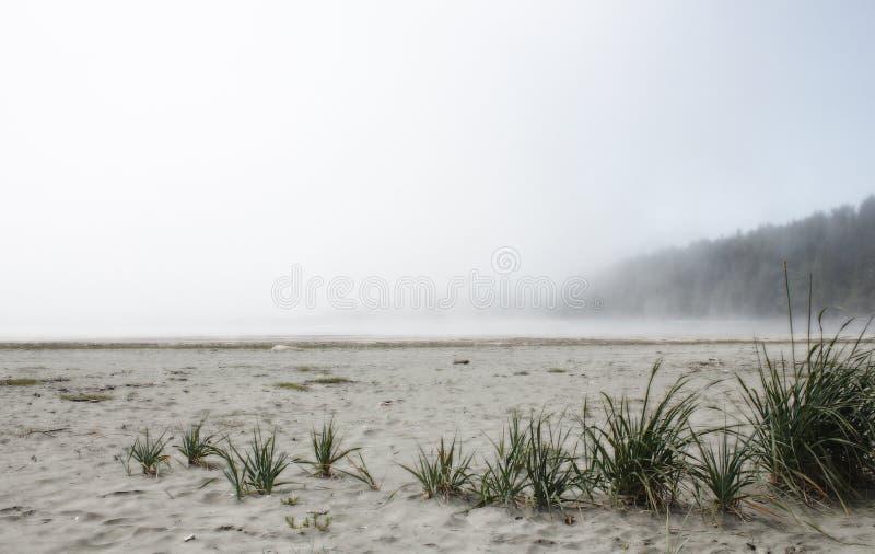 有雾的海洋海滩 免版税库存图片