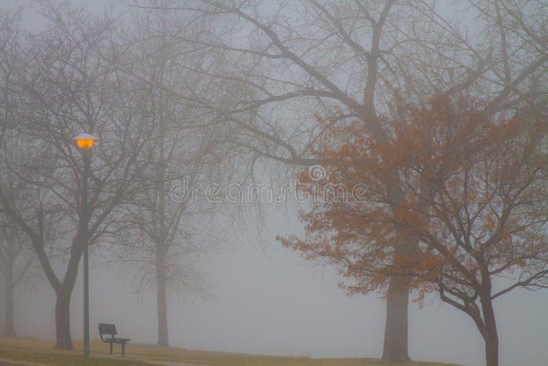 有雾的湖视图 免版税库存图片
