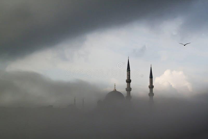 有雾的空气 库存照片