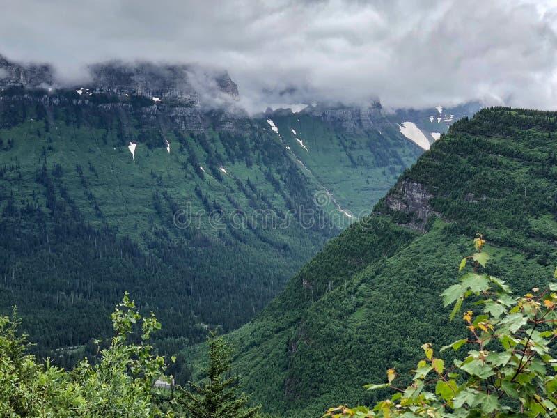 有雾的绿色草甸在冰川国家公园顶部在蒙大拿 库存照片