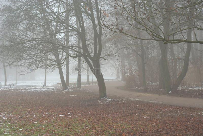 有雾的运输路线 库存图片