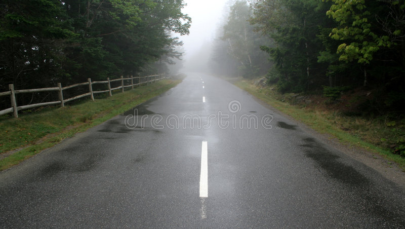有雾的远期 图库摄影