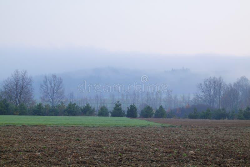 有雾的风景 免版税库存图片