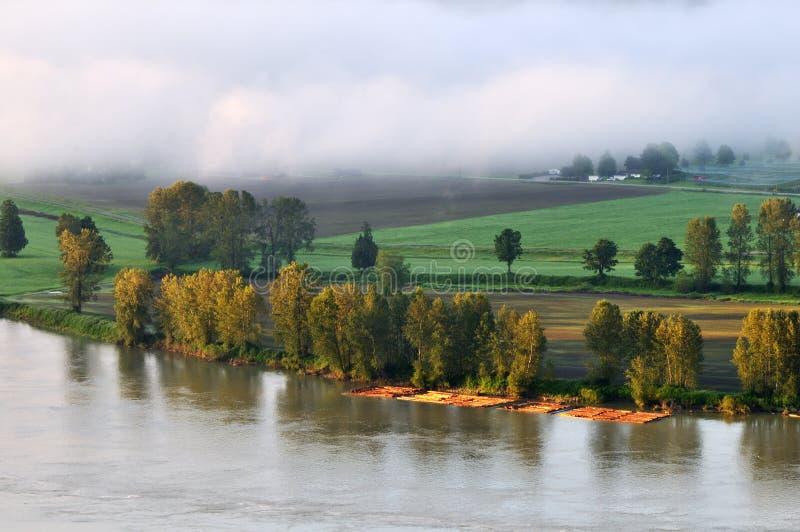 有雾的fraser河日出 免版税库存照片