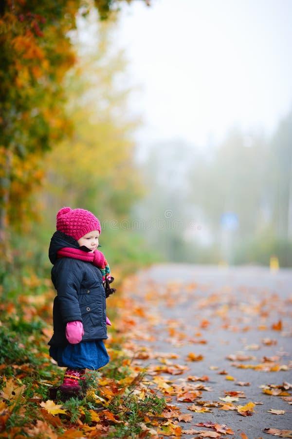 有雾秋天的日 库存照片