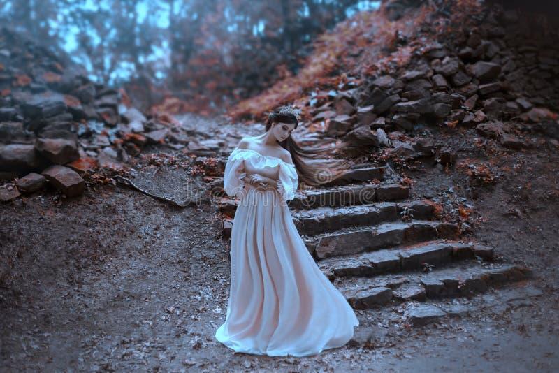 有非常摆在以一个老石楼梯为背景的长的头发的年轻公主 女孩有一个水晶冠 免版税库存照片