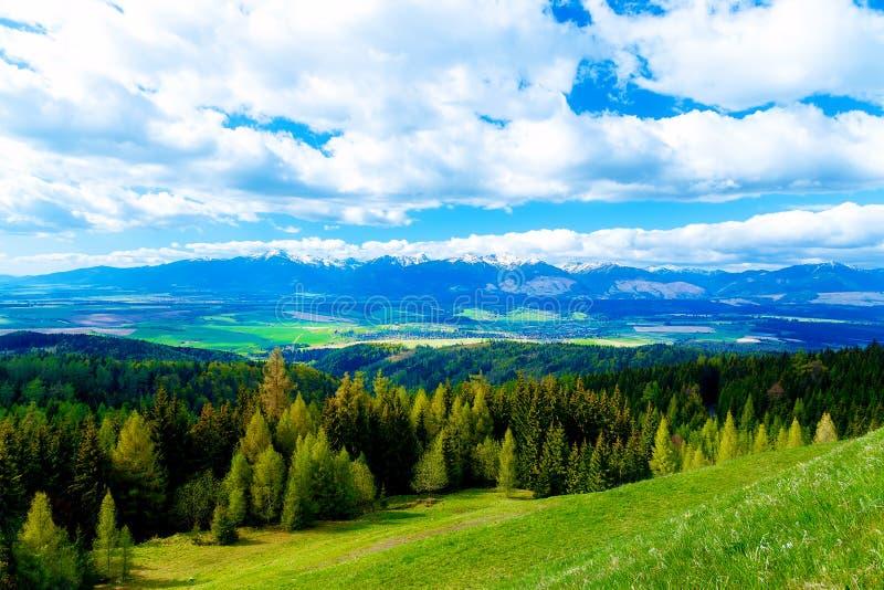 有领域的美丽的风景,绿色和黄色草甸和雪山和村庄 免版税库存照片