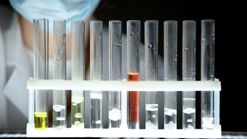 有颜色液体的,开展秘密科学研究的试验室工怍人员试管 库存图片