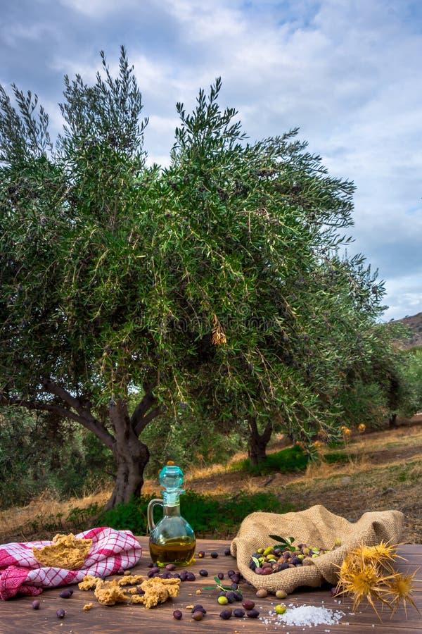 有额外处女橄榄油的瓶,橄榄、橄榄树一个新分支和克里特岛人面包干dakos在木桌上关闭  库存图片