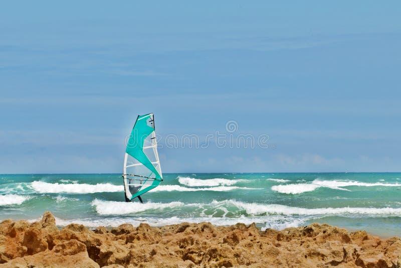 有风帆的在波浪中的风帆冲浪者和海岸 库存图片