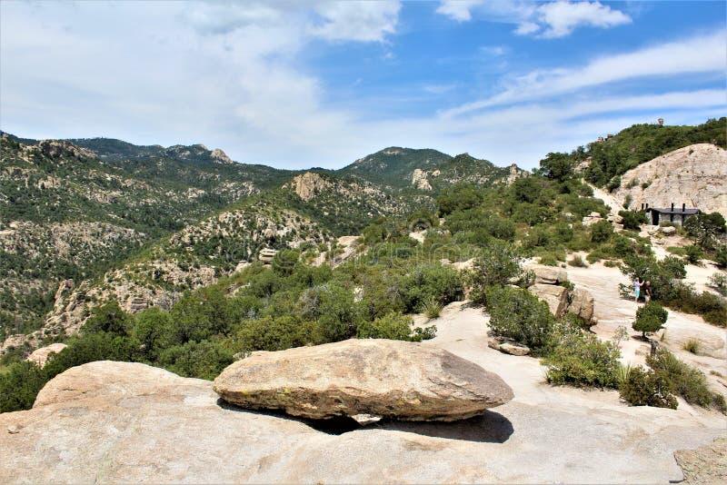 有风点景色,登上莱蒙,圣卡塔利娜山,林肯国家森林,图森,亚利桑那,美国 免版税图库摄影