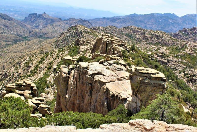 有风点景色,登上莱蒙,圣卡塔利娜山,林肯国家森林,图森,亚利桑那,美国 图库摄影