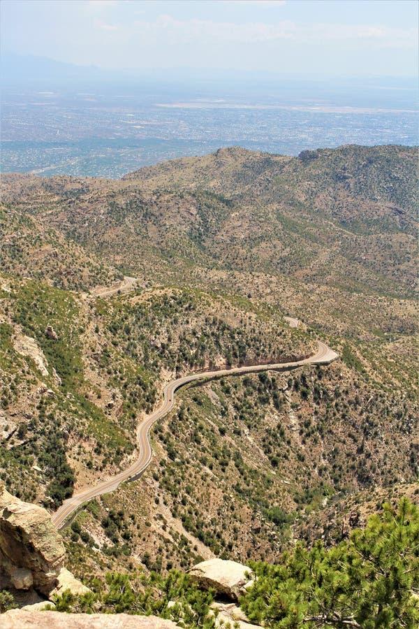 有风点景色,登上莱蒙,圣卡塔利娜山,林肯国家森林,图森,亚利桑那,美国 库存照片
