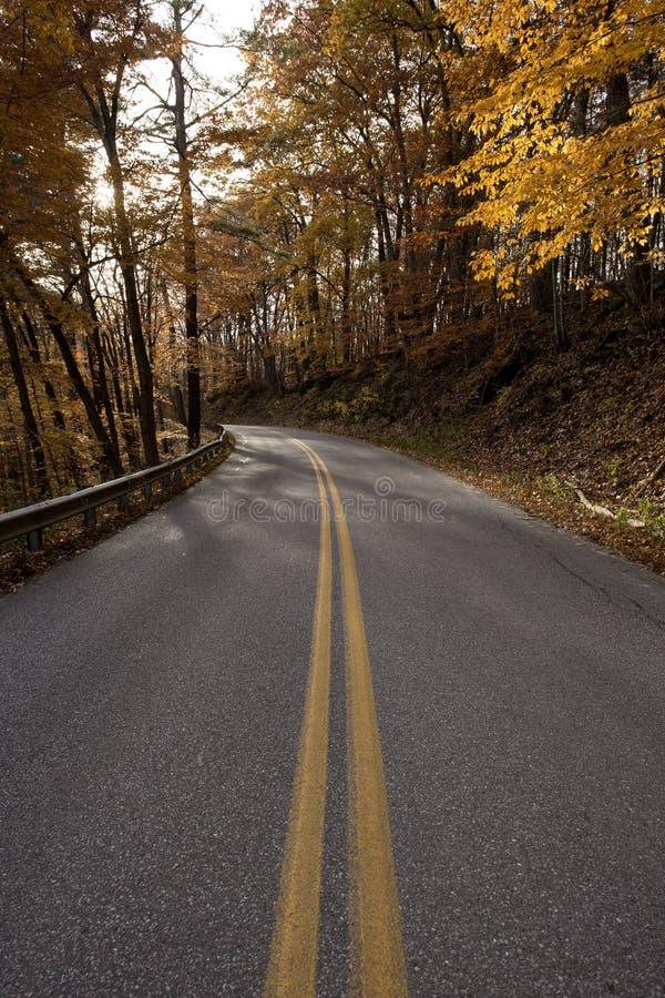 有风路在一个秋天早晨 免版税库存图片