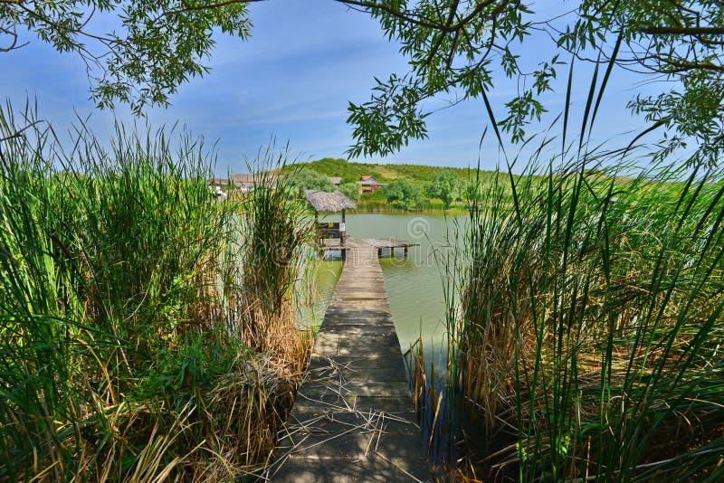 有风雨棚的渔地方在湖的芦苇后从Hanul Pescarilor餐馆在奥拉迪亚 库存图片