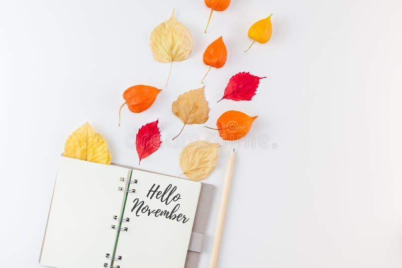 有飞行干花和叶子的笔记本 向量例证