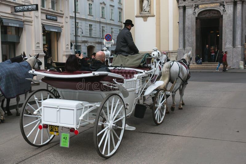 有马、司机和游人的支架在观光旅游中的维也纳在城市附近 免版税库存图片