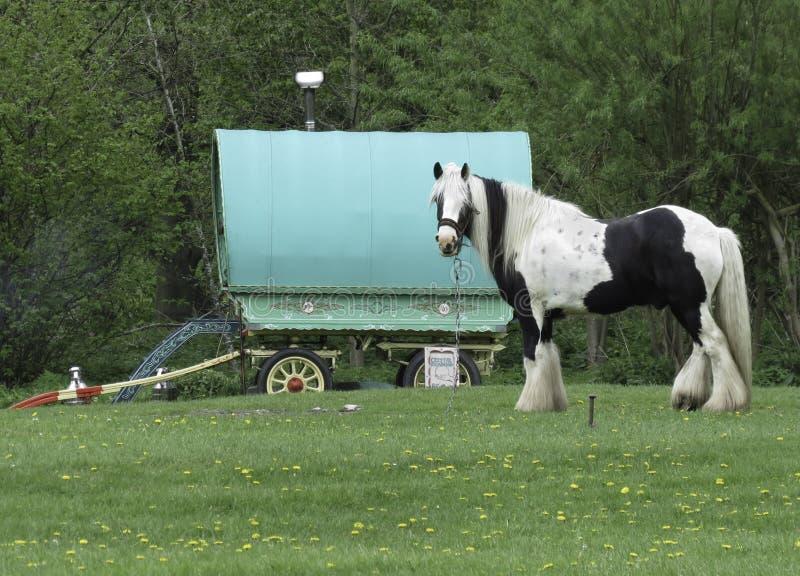 有马的吉普赛有蓬卡车 免版税图库摄影