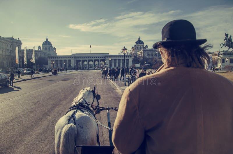 有马的在霍夫堡宫附近,维也纳驿马车 免版税库存图片