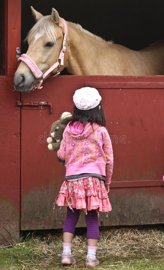 有马的孩子 图库摄影