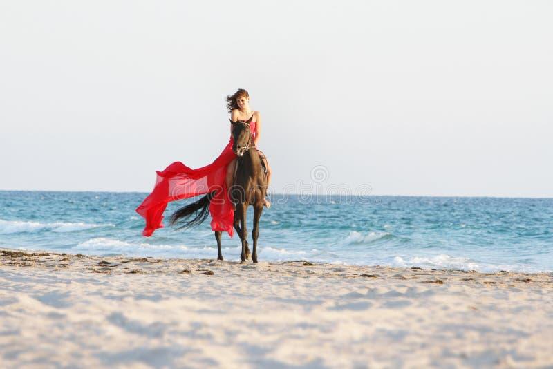 有马的愉快的妇女在海运背景 库存照片