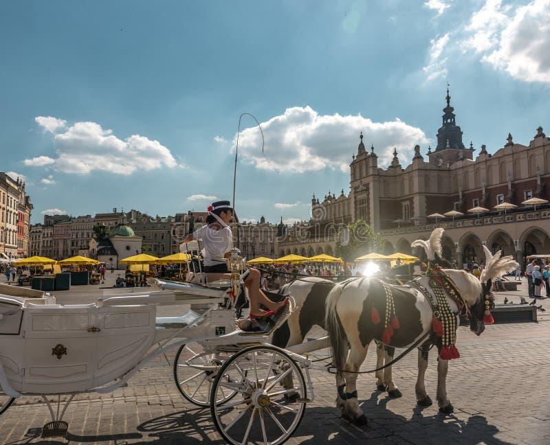 有马的支架临近古老正方形,克拉科夫 免版税库存图片