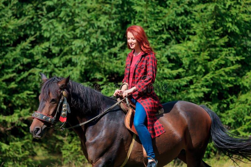 有马的Redehad女孩在森林里 免版税库存照片
