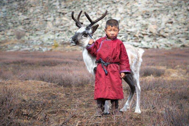 有驯鹿的一点Tsaatan男孩 免版税库存图片