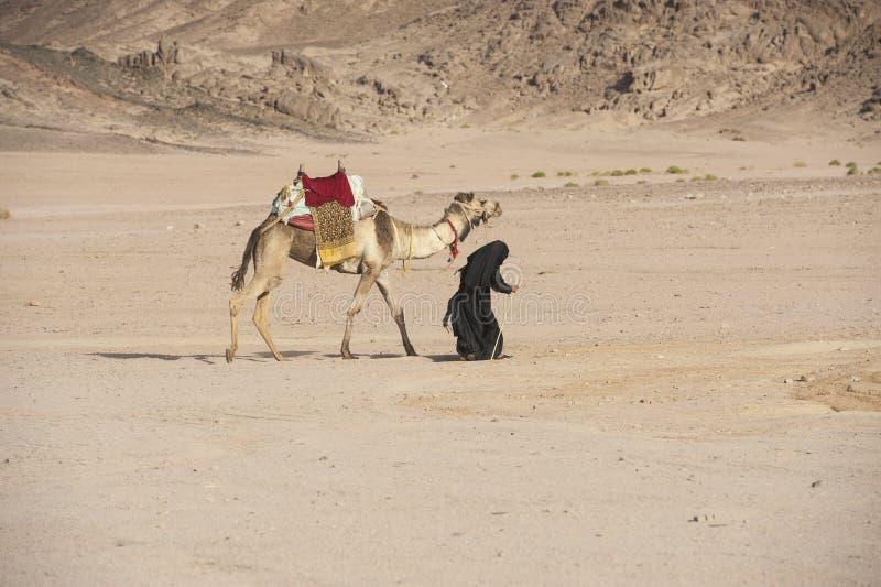 有骆驼的老流浪的妇女在沙漠 免版税库存图片