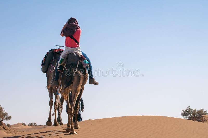 有骑马游人的独峰驼有蓬卡车在摩洛哥沙漠 免版税库存照片