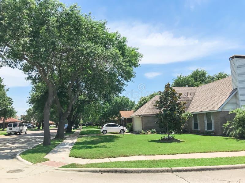 有高大的树木机盖、路和单身家庭的房子的相当邻里排队了 免版税图库摄影