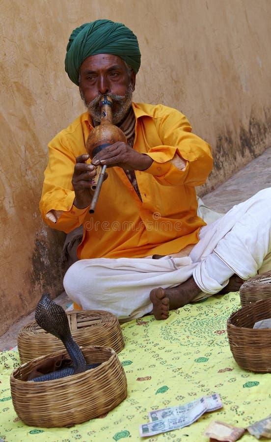 有魅力者印度拉贾斯坦蛇 库存图片