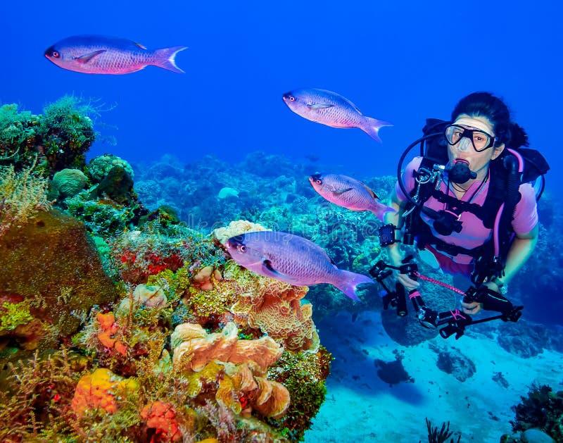有鱼的女性轻潜水员在珊瑚礁 库存照片