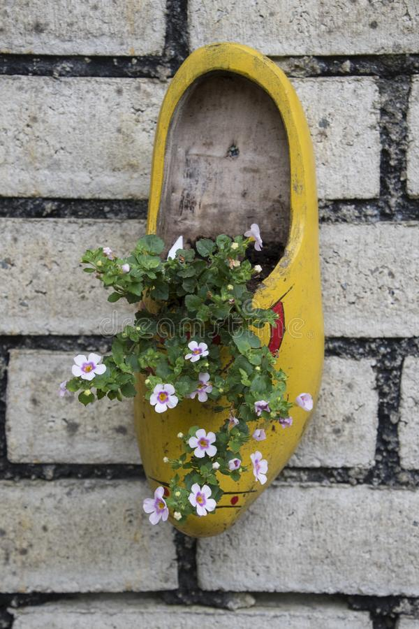 有鲜花的传统荷兰木鞋子 免版税图库摄影