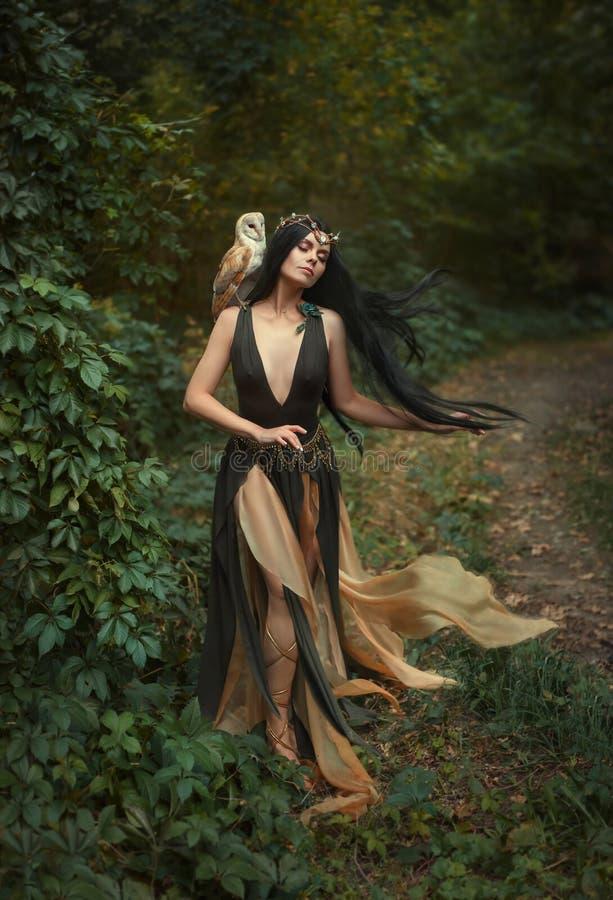 有鸟的神奇女巫 库存照片