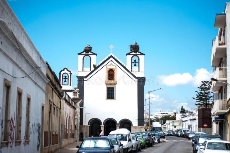 有鸟鹳巢老城市的老教会 免版税库存图片