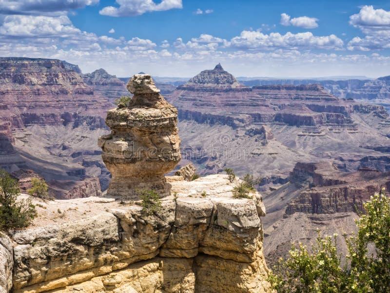 有鸭子的大峡谷国家公园全景 库存图片