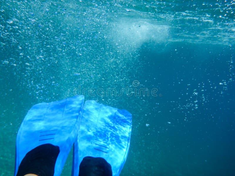 有鸭脚板水下的视图伊塔卡海岛的,莫洛斯海湾,爱奥尼亚海,希腊女性腿 免版税库存图片