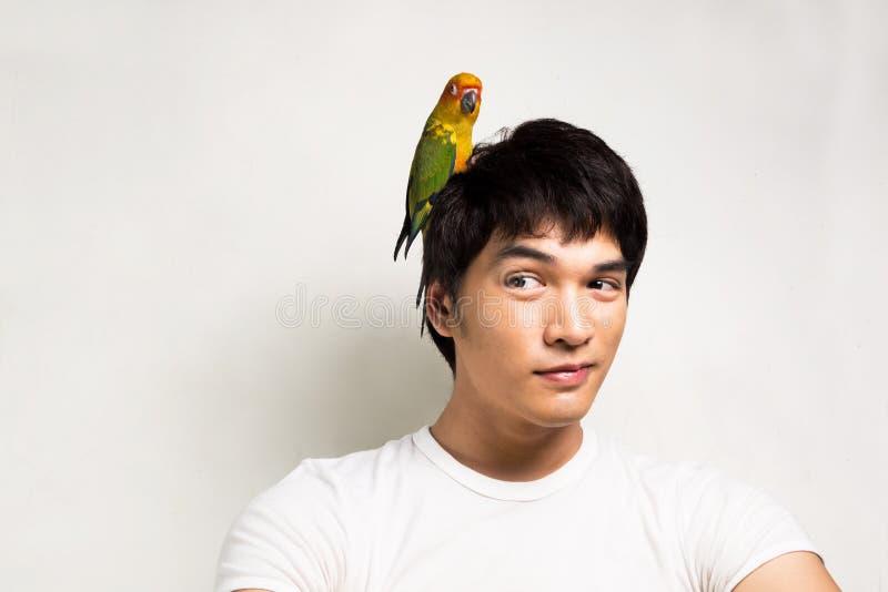 有鹦鹉的-太阳Conure亚裔人 库存图片