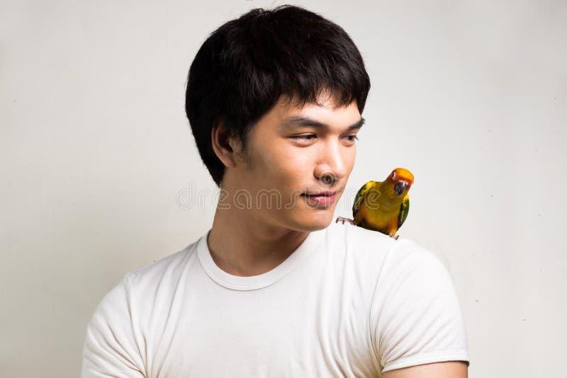有鹦鹉的-太阳Conure亚裔人 免版税图库摄影