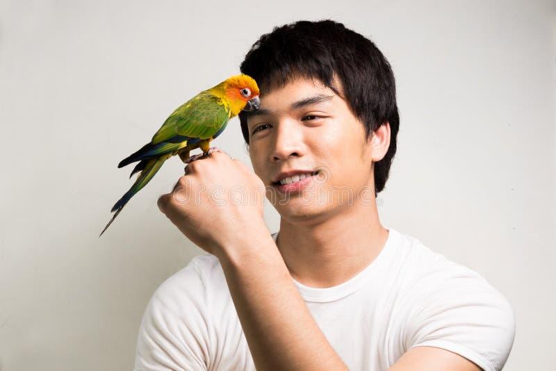 有鹦鹉的-太阳Conure亚裔人 免版税库存图片